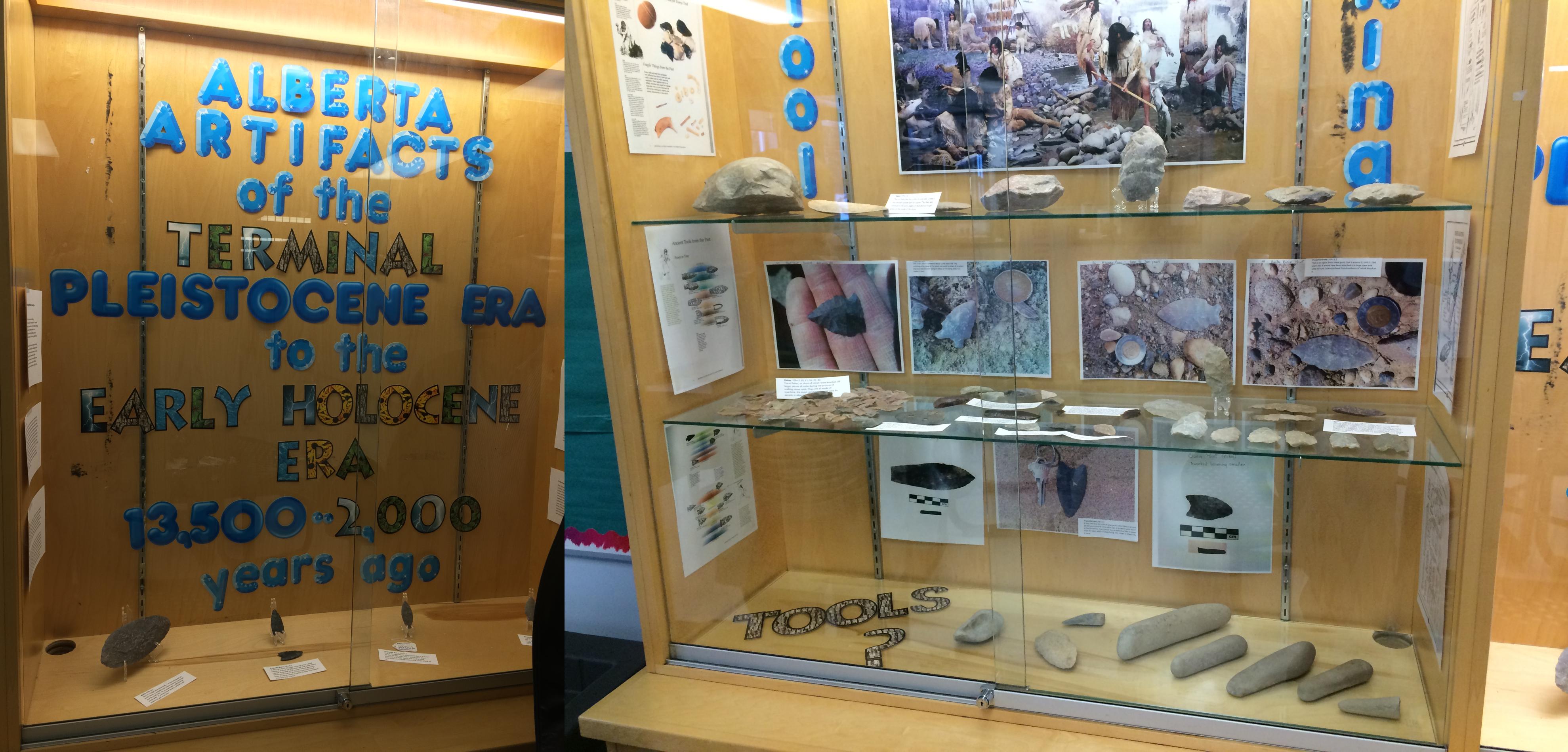 edson display