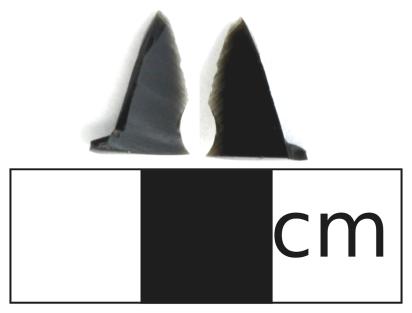 Obsidian piece found at FePr-4