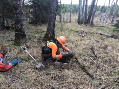 Elenore digging at FePr-4