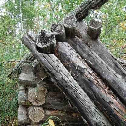 Chainsaw-cut cabin logs