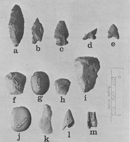 Alook artifacts - Copy