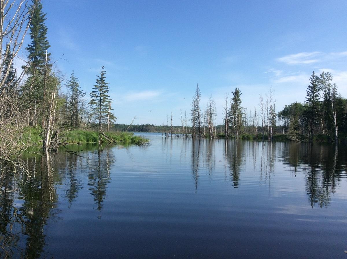 beaver pond sw of wabasca - Copy