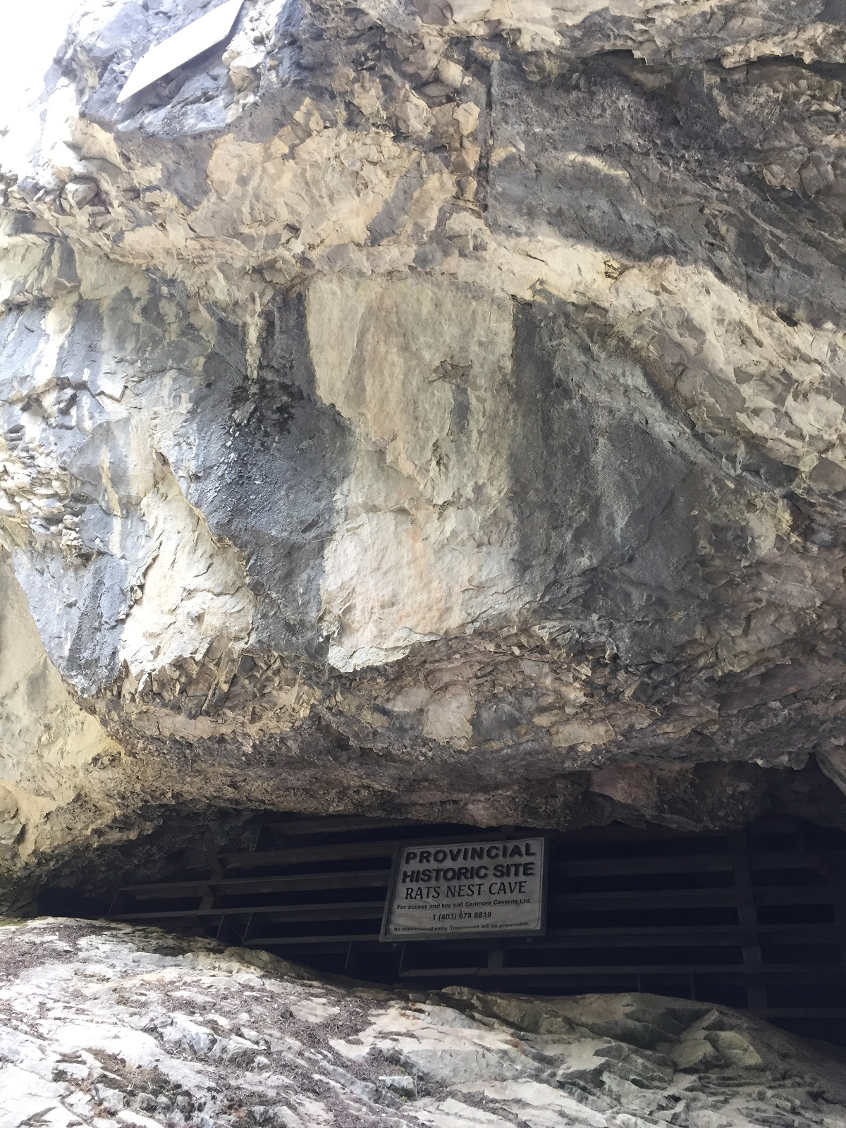 Rat's Nest Cave – Pictographs